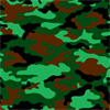 Camo Green Chocolate Transfer Sheet