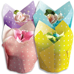 Pastel Polka Dot Folded Muffin Cup Set
