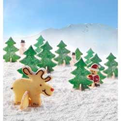 SALE!  3D Christmas Scene Cookie Cutter set