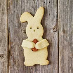 Cuddle Rabbit Cookie Cutter