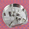 Sand Dollar Cookie Cutter, Hammer Song
