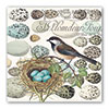 Nest & Eggs Paper Lunch Napkins
