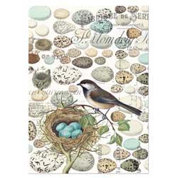 SO!  Nest & Eggs Kitchen Towel