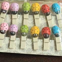 Colorful Ladybug Wooden Clip Set