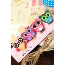 SALE!  Cozy Owl Wooden Clip Set