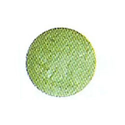 Luster Dust Light Green (Meadow Green), 2 gram jar