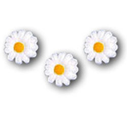 Sugar Daisies White Small, Set of 24