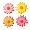 Sugar Daisies Bright, Set of 10