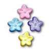 Sugar Flower Pastel Button, Set of 30