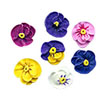 Icing Flower Pansies Minis, Set of 20