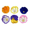 Icing Flower Pansies 1.25, Set of 12