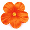 Icing Hibiscus Flower Orange, Set of 6