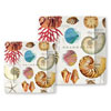 Michel Design Works Shells Paper Plates, Lunch