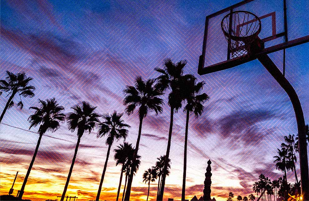 Basketball hoop with palm trees behind it