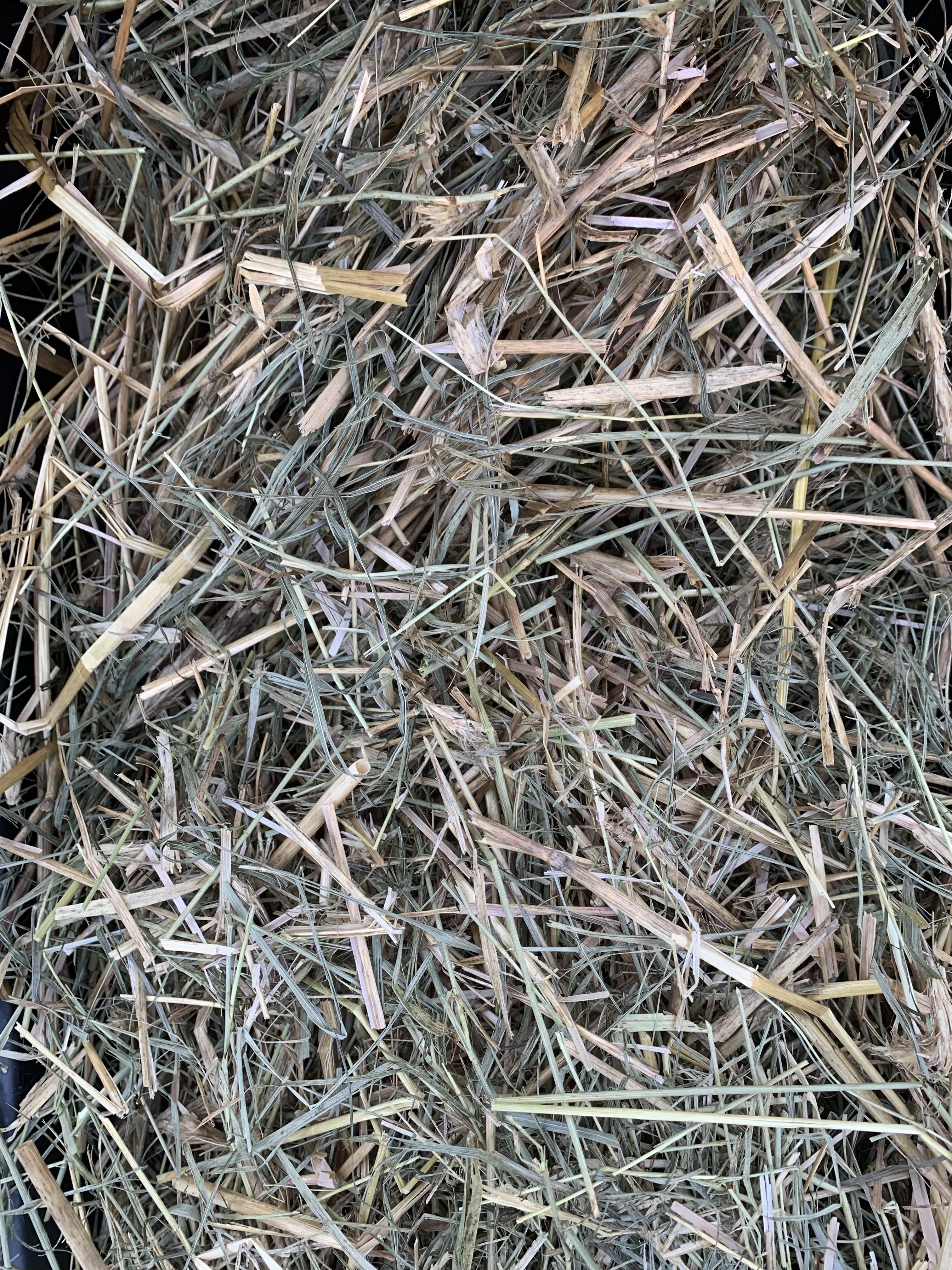 Weedy Straw