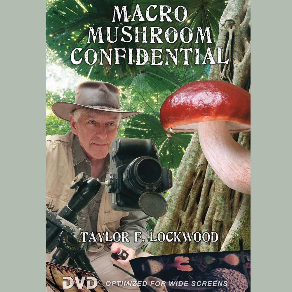 Macro Mushroom Confidential DVD by Taylor Lockwood
