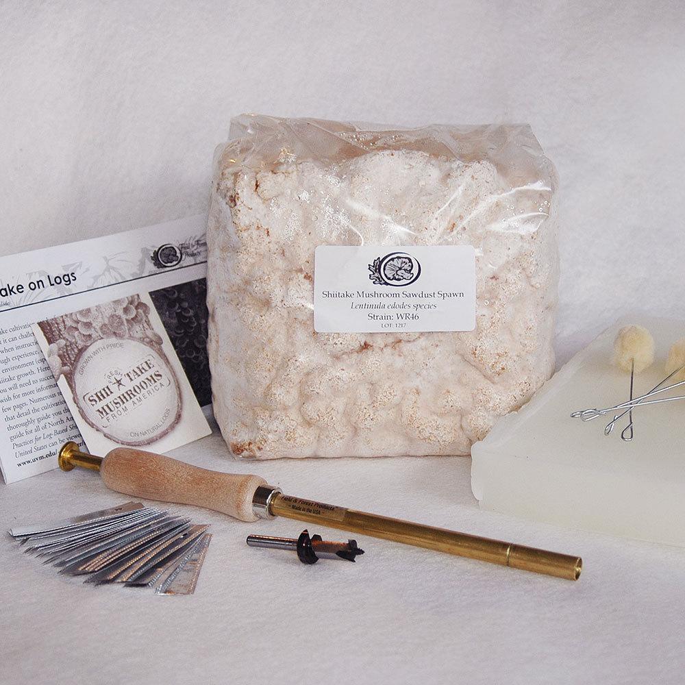 Shiitake Sawdust Spawn Starter Kit