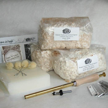 Shiitake 3-Season Collection - Sawdust Kit