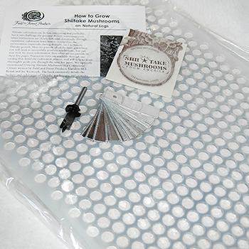 Thimble Spawn Starter Kit