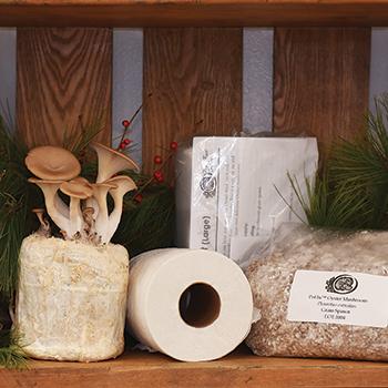 Oyster TeePee™ Kits