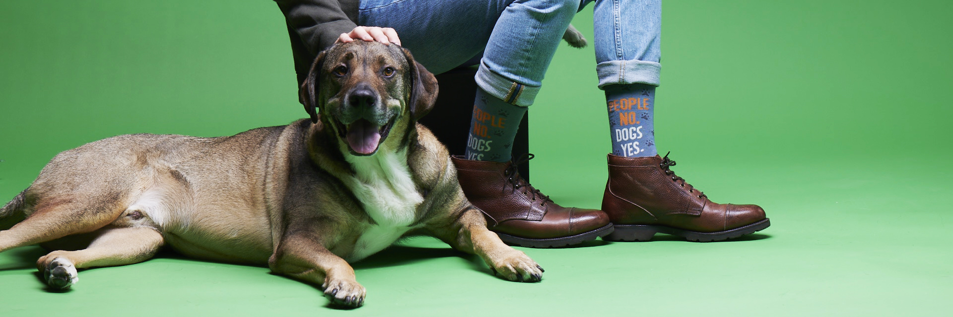 people no, dogs yes, mens socks with giant dog