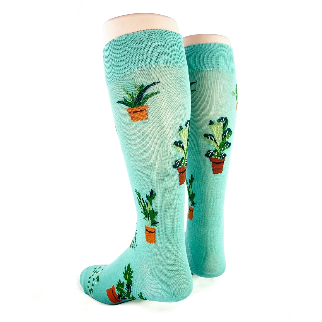back view of mens houseplants plants socks