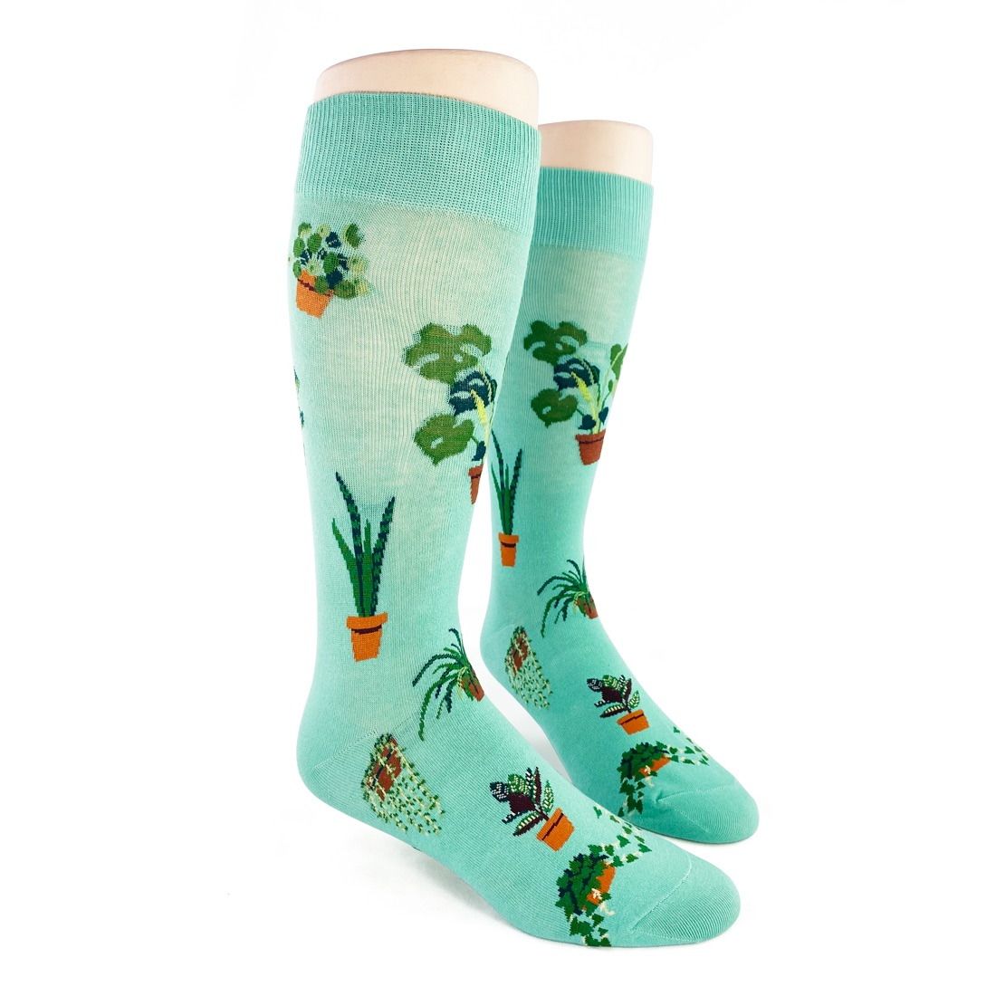 side-front view of mens houseplants plants socks