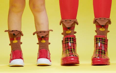 3d dachshund dog socks for kids and women