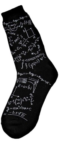 Genius Women's Novelty Socks