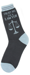 Lawyer Women's Socks
