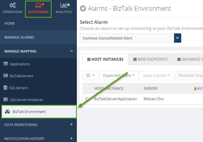 biztalk360 host instances alarms window
