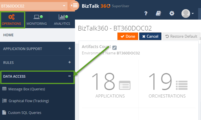 biztalk360 data access window