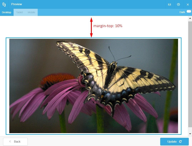 margin example
