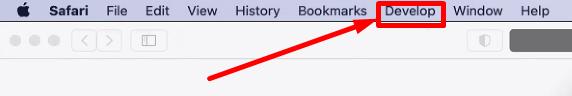 Develop menu between Bookmarks and Window