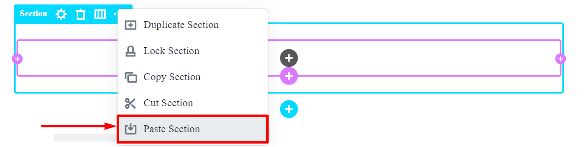 Paste Section option