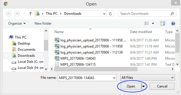 MIPS Portal - Upload Data - Open Chosen File