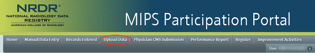 MIPS Portal - Data Upload Tab