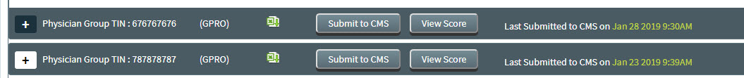 MIPS Portal - CMS Submission - Select Measures - Finalize Button