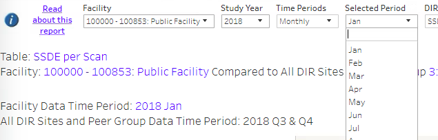 DIR CT Facility Excel Report Time Periods Filter