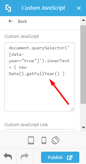 Code pasted to Custom JavaScript text area