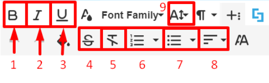 Basic text formatting options in Visual Builder