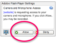 adobe flash player allow access button
