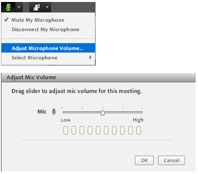adjust microphone button and dialog box