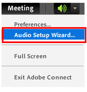 audio setup wizard button