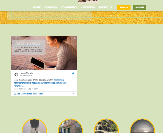 Embed in Pages : LearnWorlds Help Center