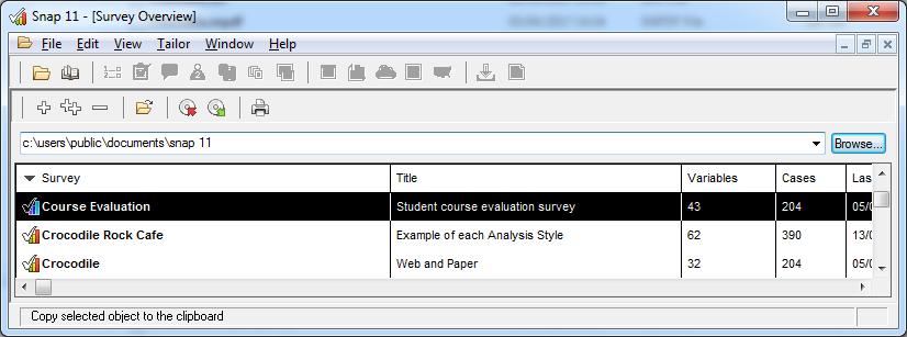 survey overview window