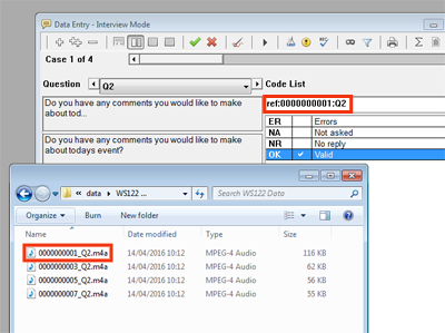 Q2 data entry & audio file windows