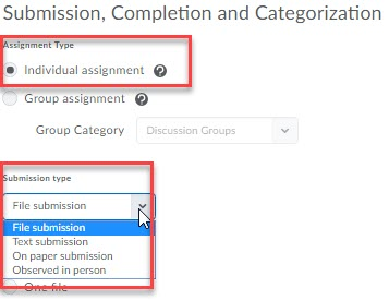 individual assignment option