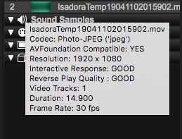 Isadora 3 Release Notes : TroikaTronix