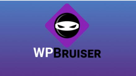 plugin security wordpress terbaik wp bruiser